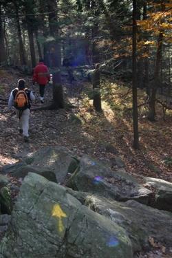 Hiking1141_3