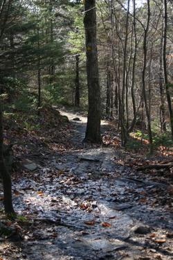 Hiking1145