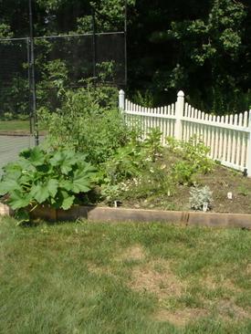 Garden718